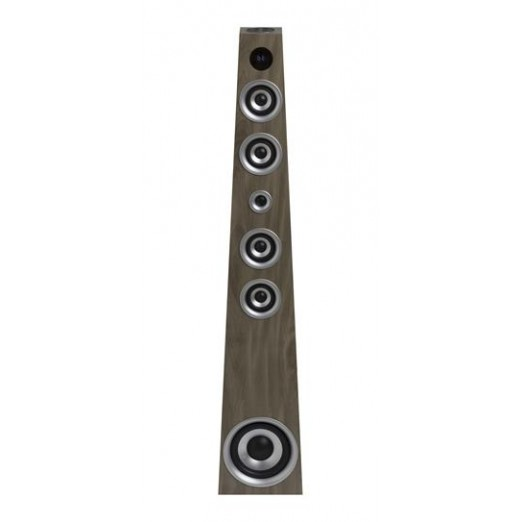 BRANDANI SOUND TOWER 100WATT